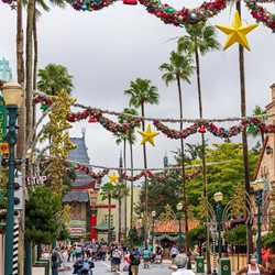 2020 Holiday Decorations at Disney's Hollywood Studios