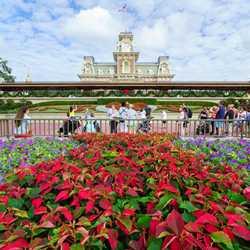 Holidays decorations at the Magic Kingdom 2016