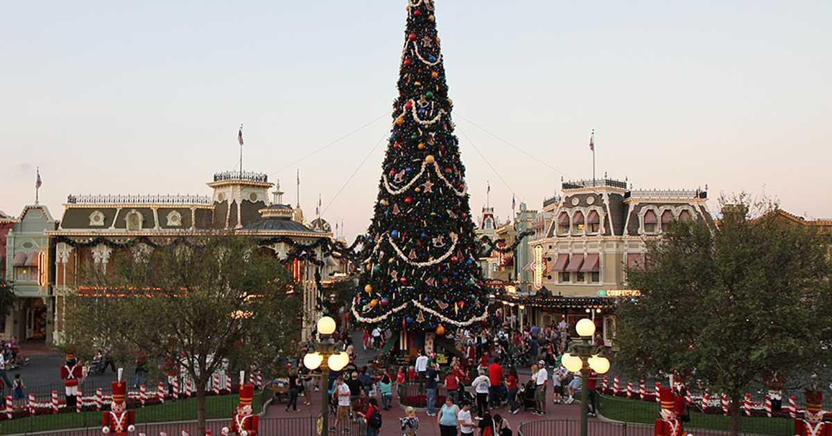 Holidays Decorations And Christmas Tree At The Magic Kingdom 2009 Photo 1 Of 12