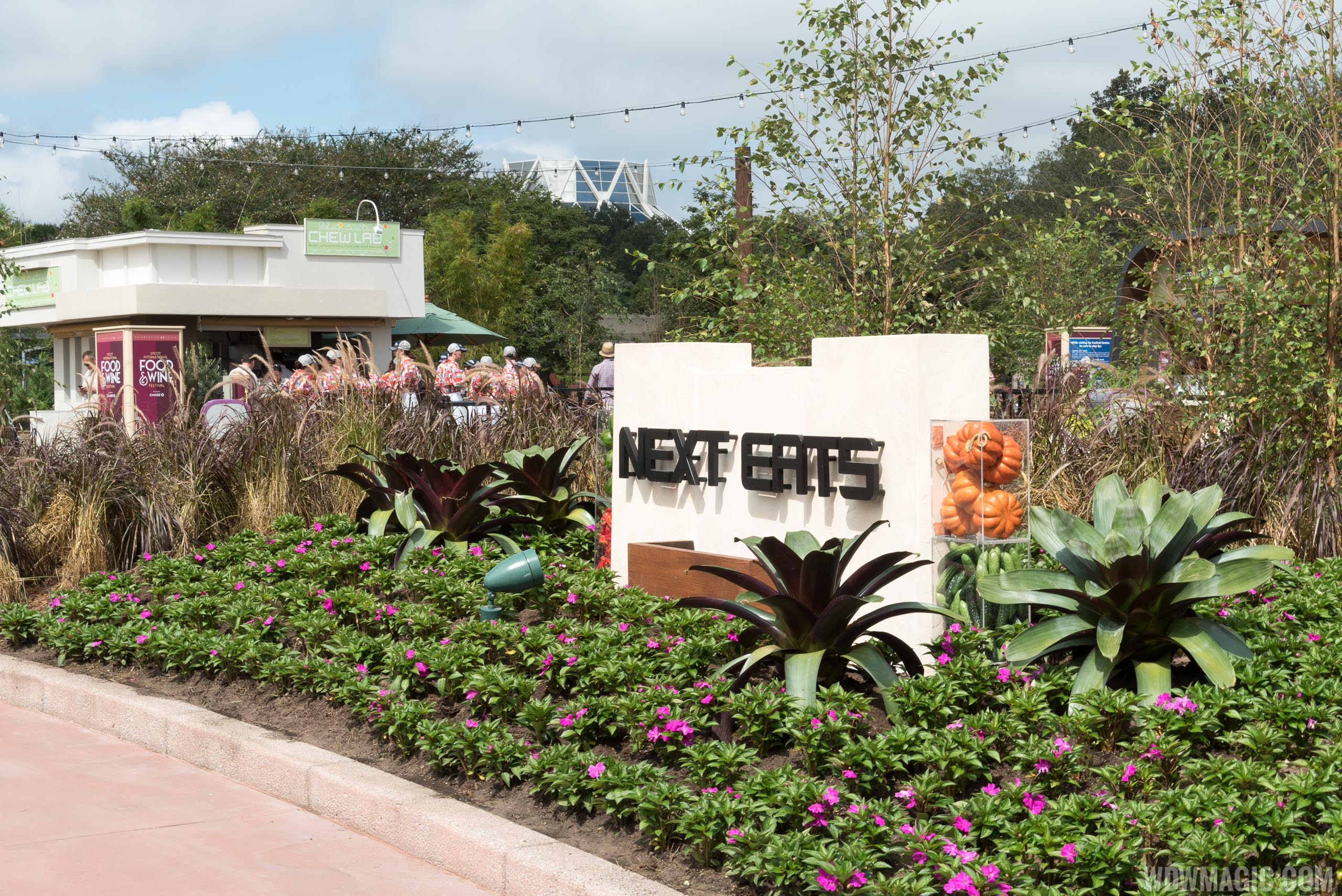 2015 Epcot Food and Wine Festival - Next Eats