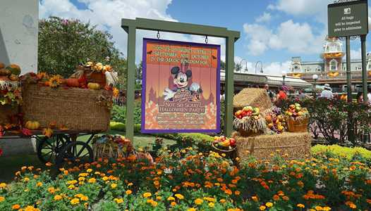 Entertainment, character line-up and treat trail locations for the 2019 Mickey's Not-So-Scary Halloween Party