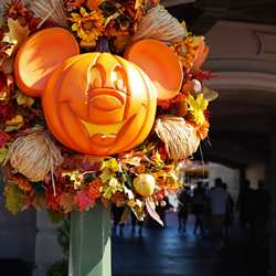 Magic Kingdom's fall Halloween decorations 2015