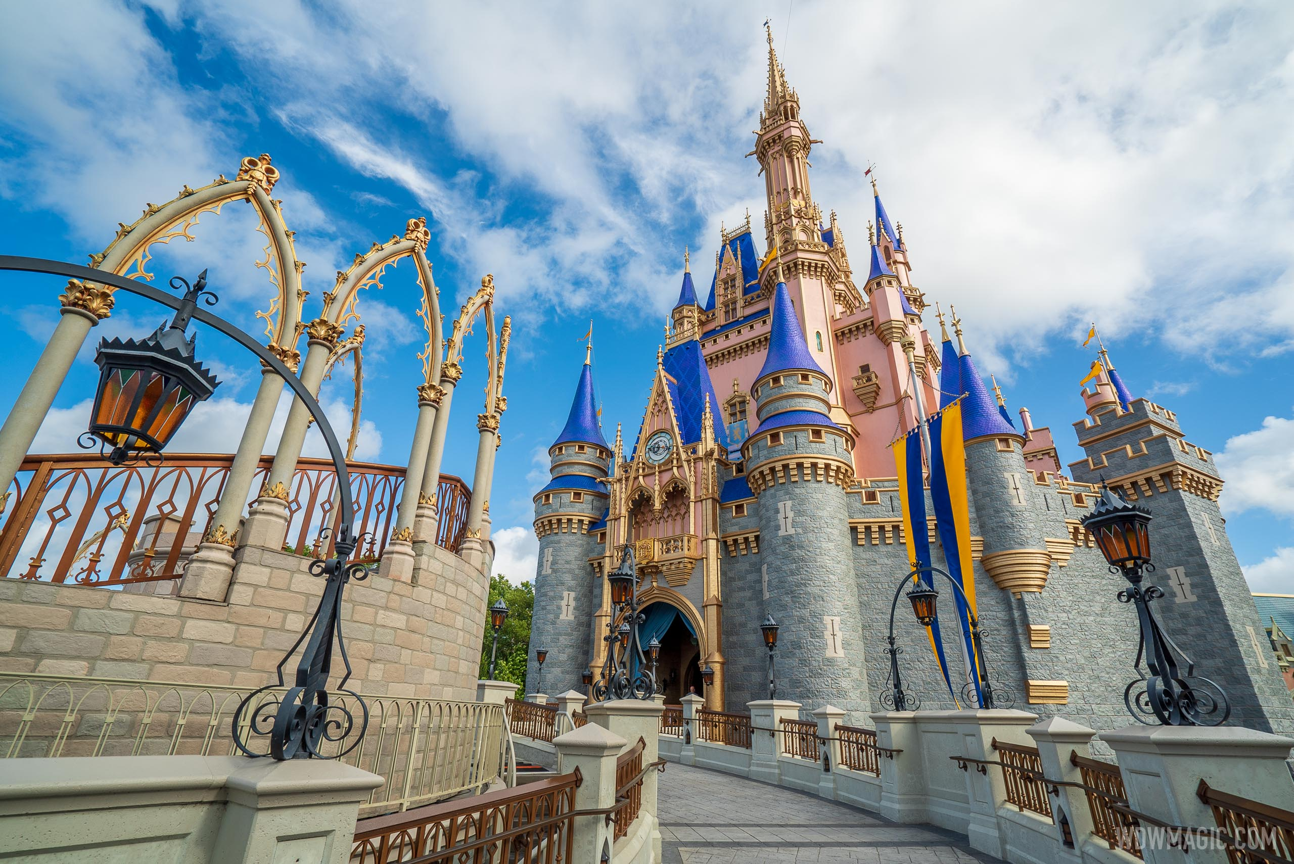 Florida Resident Disney Magic Flex Ticket overview