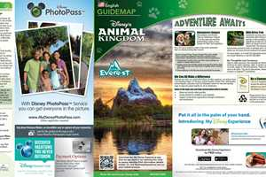 2014 Walt Disney World Park Maps with FastPass+ - Photo 1 of 8