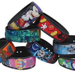 Custom personalized MagicBands