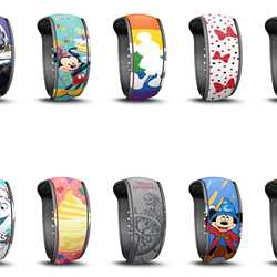 May 2019 MagicBand options for resort guests and passholders
