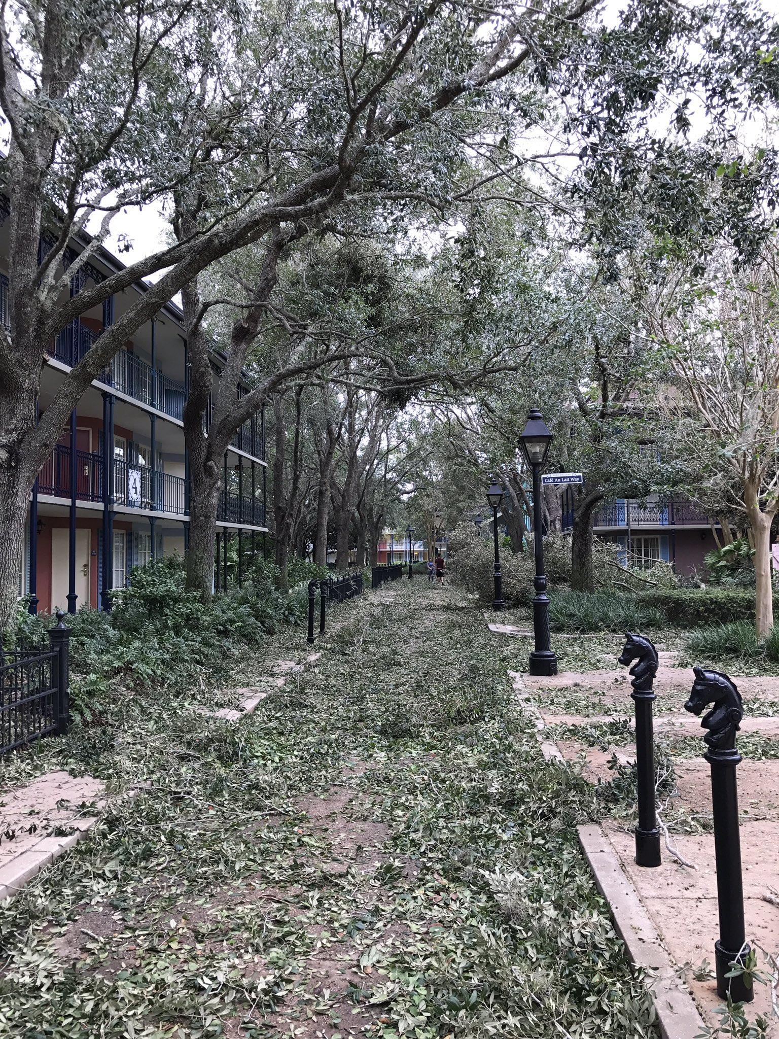 Hurricane Irma damage at Disney's Port Orleans Resort. Photo by @CafeFantasia