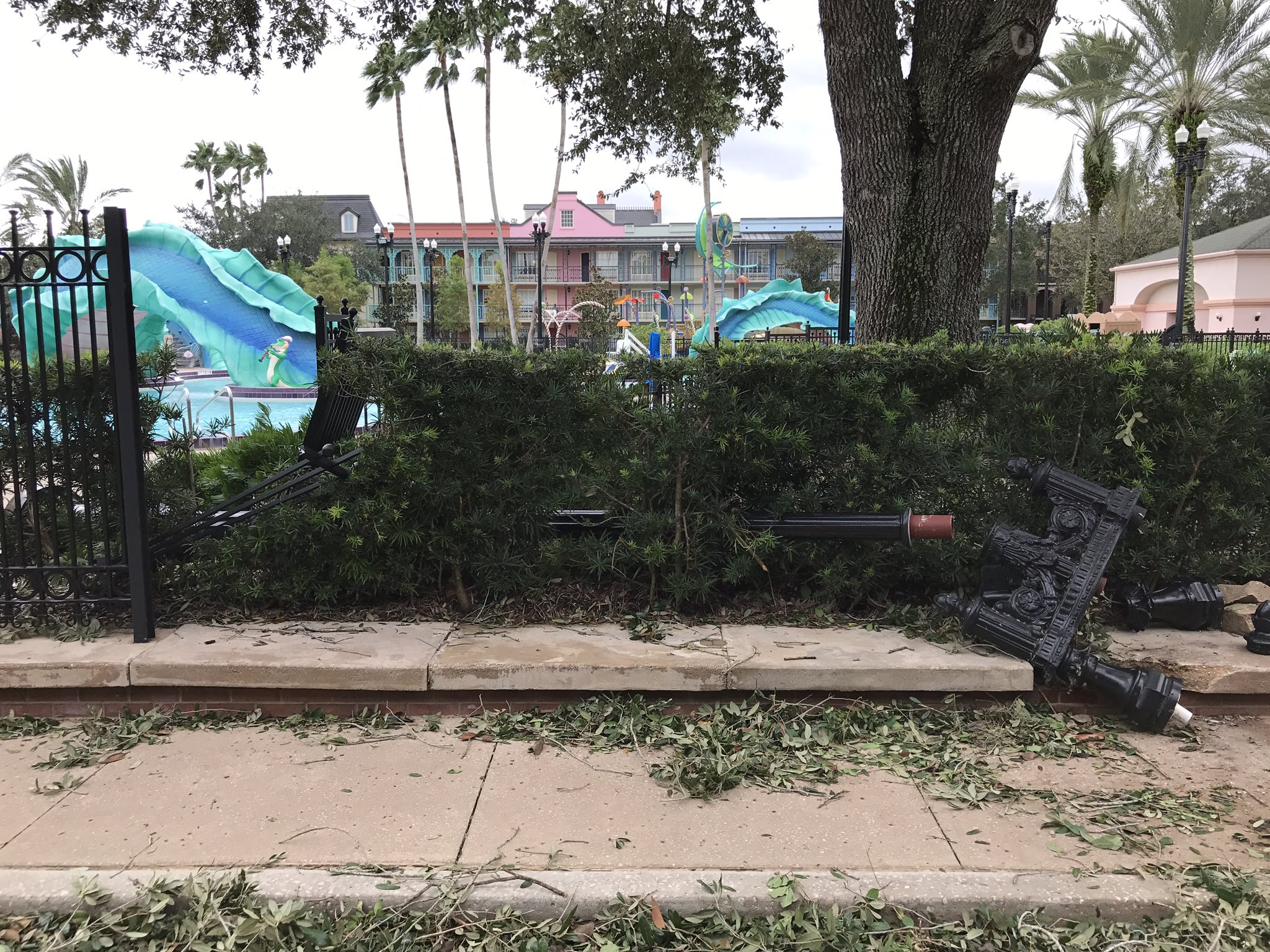 Hurricane Irma damage at Disney's Port Orleans Resort. Photo by @CafeFantasia