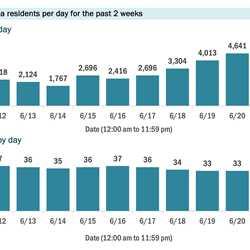 COVID-19 cases chart Florida June 24 2020