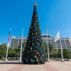 Disney's Contemporary Resort Gingerbread House and Christmas Holiday decor 2019