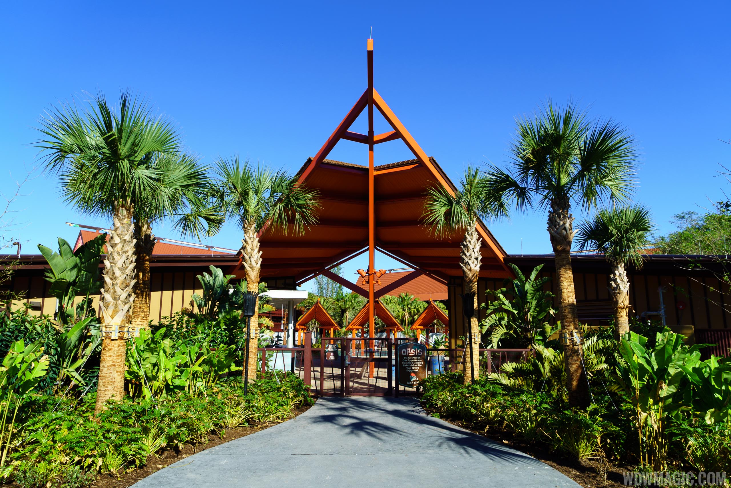 Photos Oasis Pool Area Nears Completion At Disney S