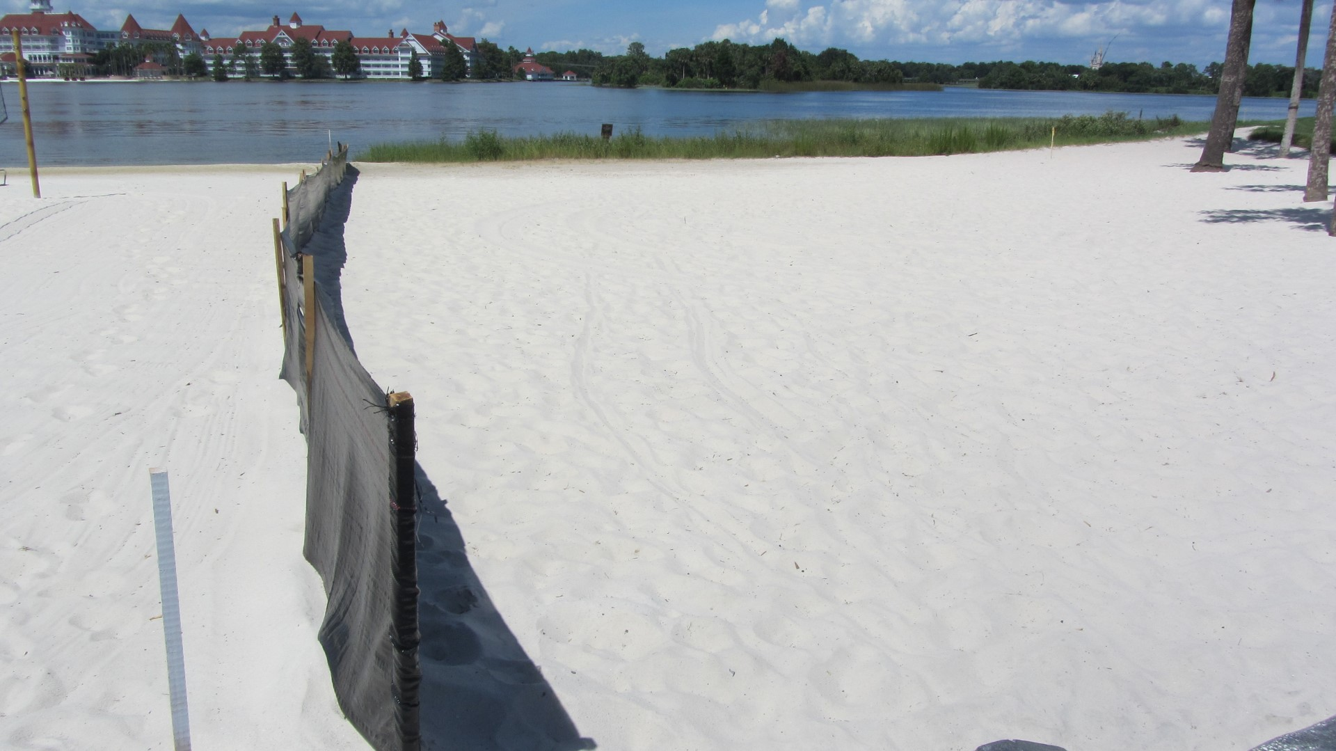 Construction barriers on the Poly beach