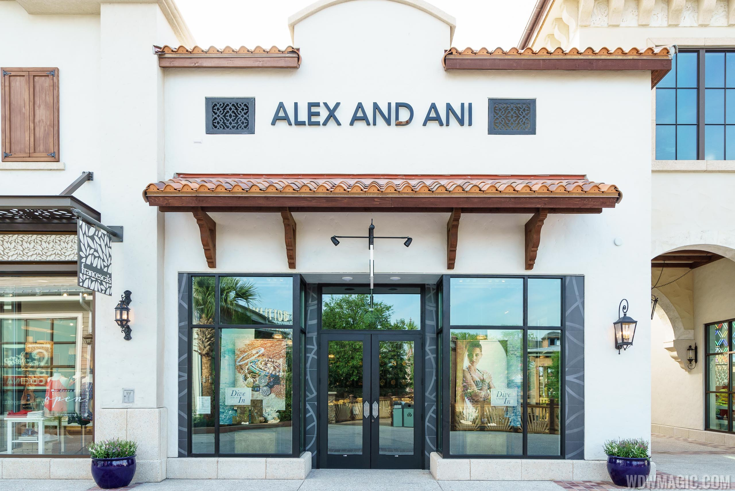 ALEX AND ANI overview