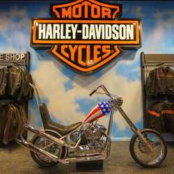 Harley-Davidson Motor Cycles in the Town Center