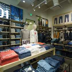 Levi's overview