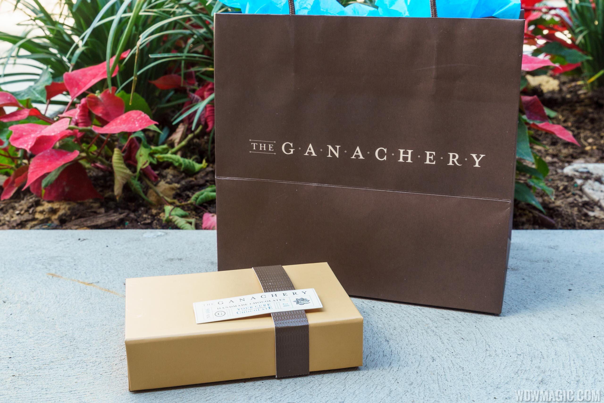 The Ganachery - Ganache assortment gift box