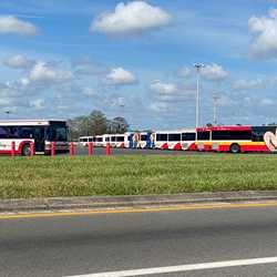 Walt Disney World Bus fleet parked during Coronavirus closure