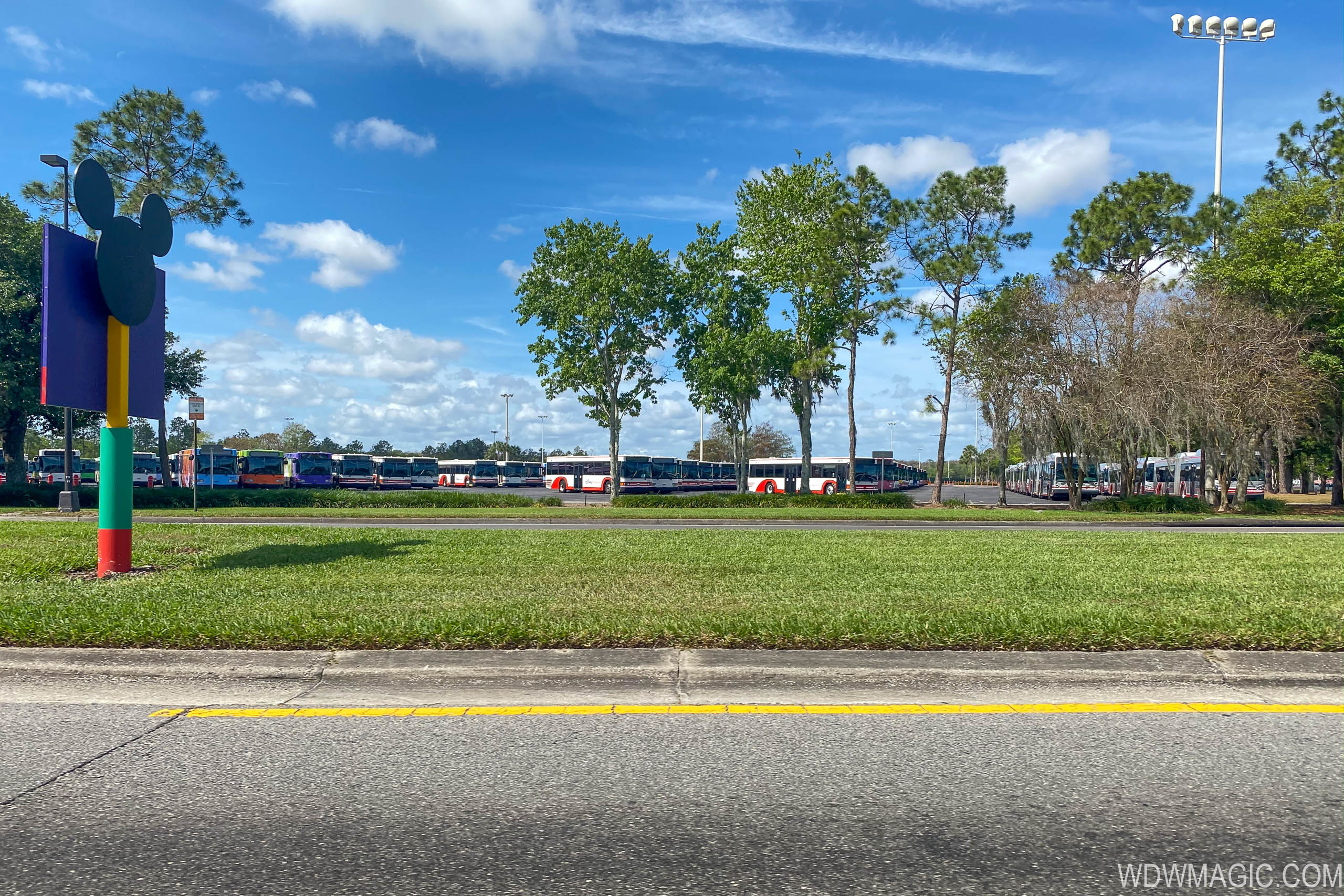 PHOTOS - All Walt Disney World transportation services now suspended