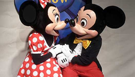 Mickey and Minnie's Surprise Celebration coming to the Magic Kingdom January 2019