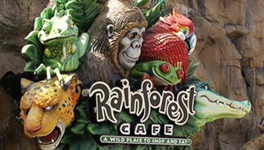 Rainforest Cafe reopens at Disney Springs and Disney's Animal Kingdom