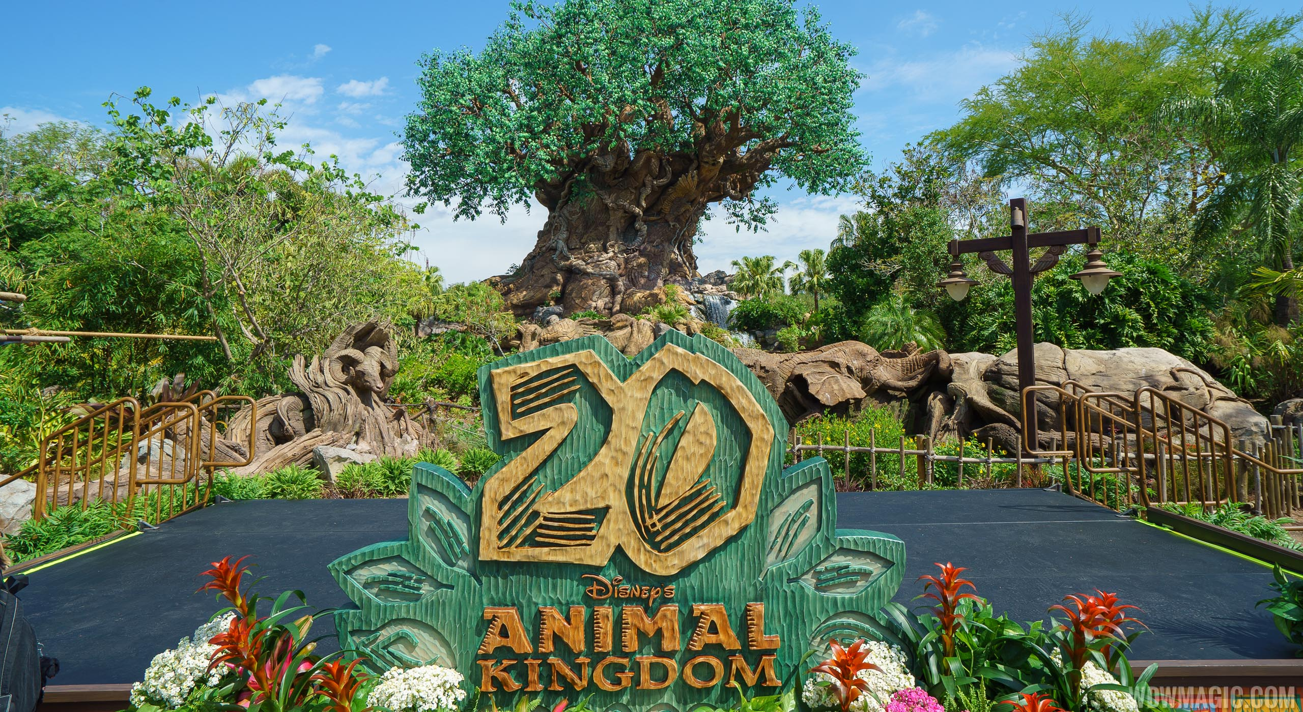 Disney's Animal Kingdom celebrates its 20th anniversary